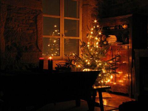 Sapin de Noël pour les fêtes, skin de Noël
