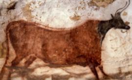 vache rouge grotte lascaux