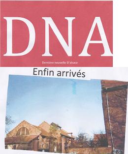 DNA Noé