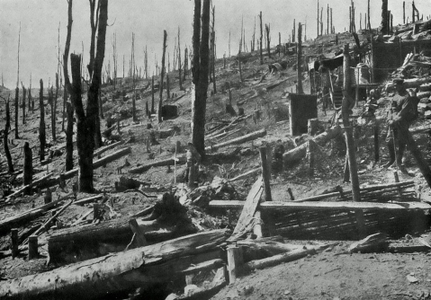1915 Hartmannswillerkopf